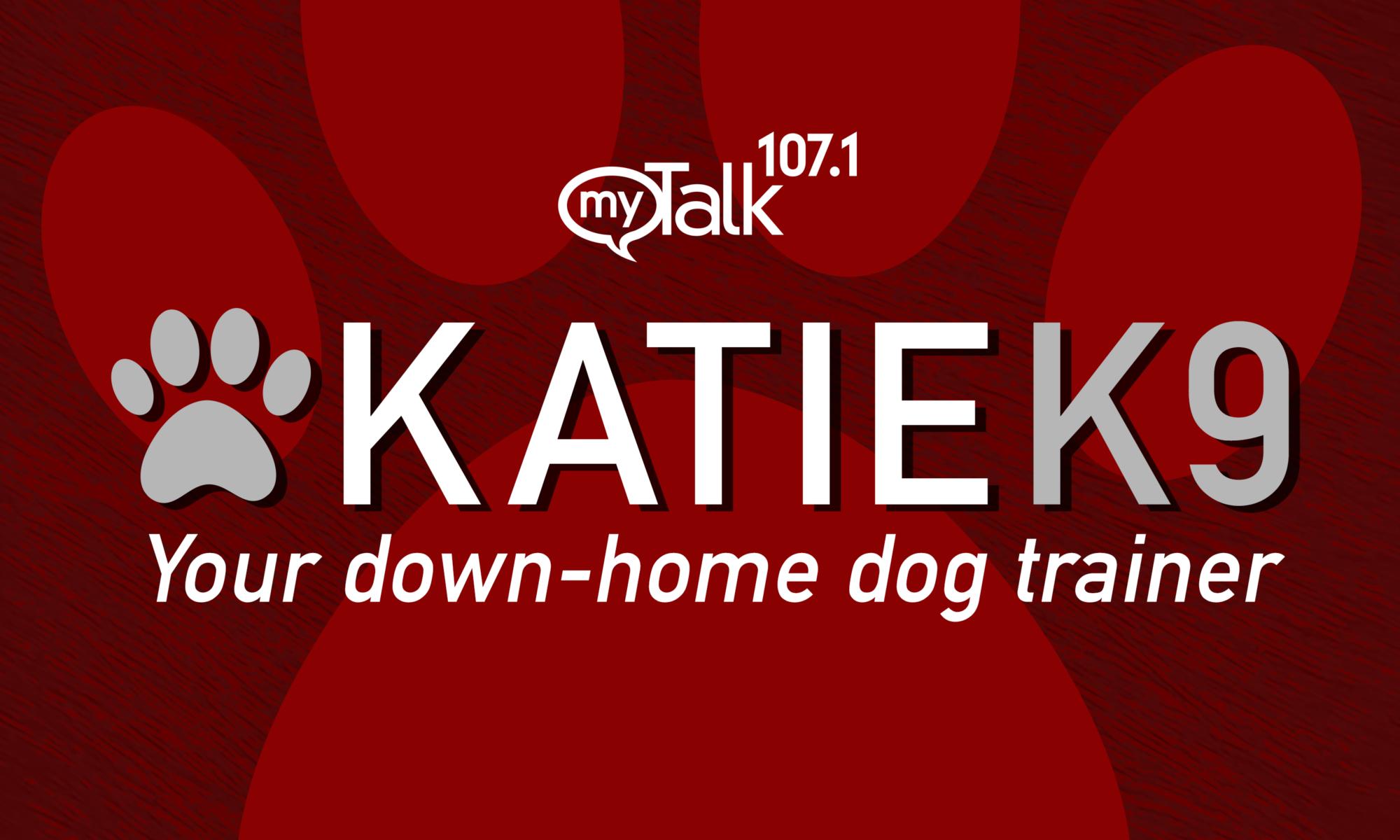 Katie K9 1